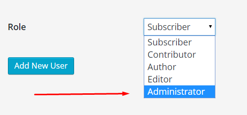 admin user role in WP