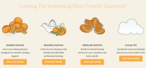 A Small Orange Review: Hosting options