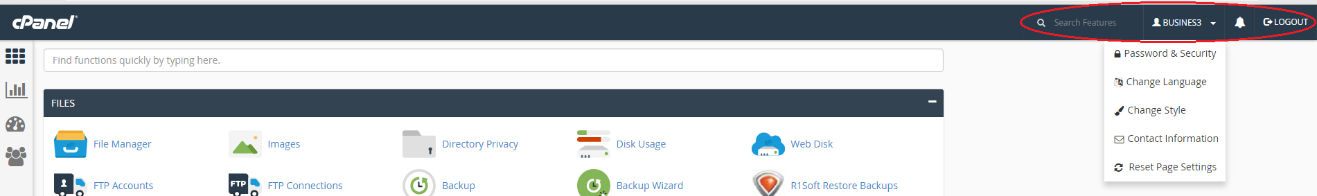 cPanel header options