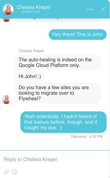 Flywheel Live Chat Demo